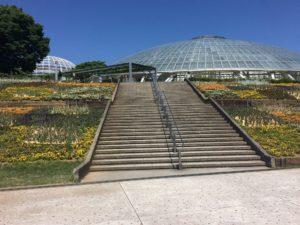 フルーツ公園花壇