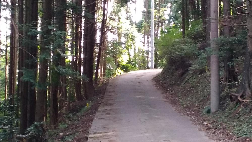 野田山キャンプ場への道