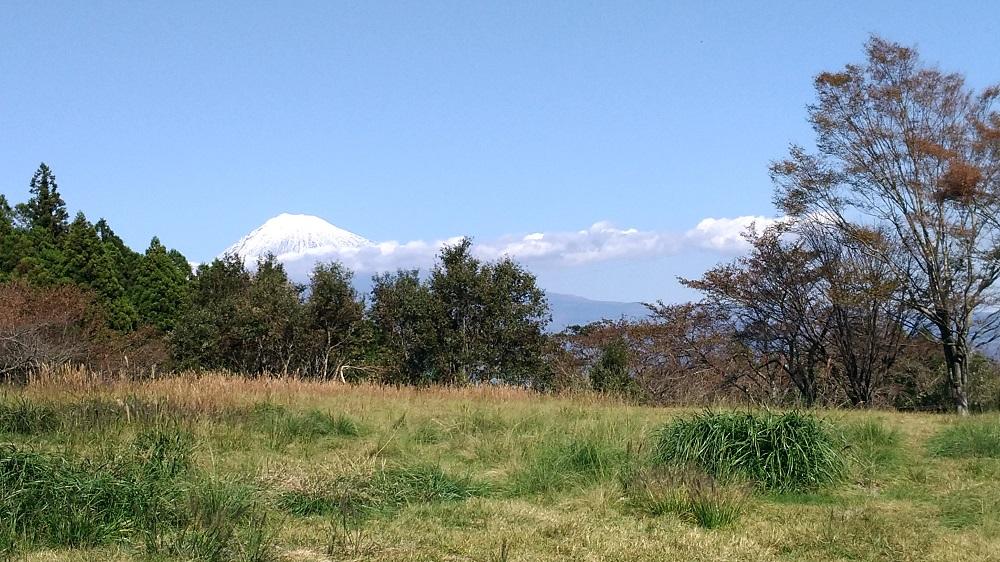 野田山健康緑地公園からの富士山