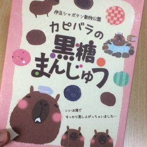 伊豆シャボテン動物公園のカピバラのお菓子を購入してみました!