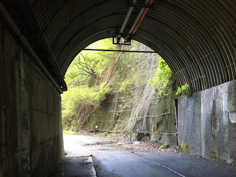 夢の吊橋に向かうトンネル