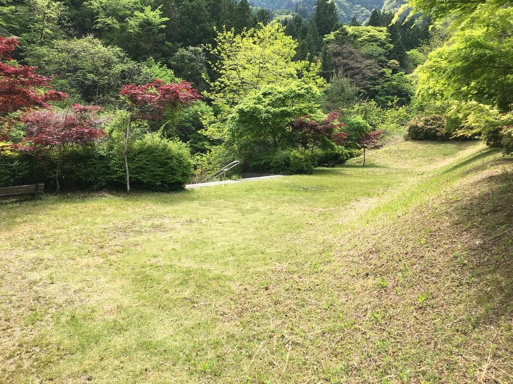 大柳川渓流公園 キャンプ場芝生