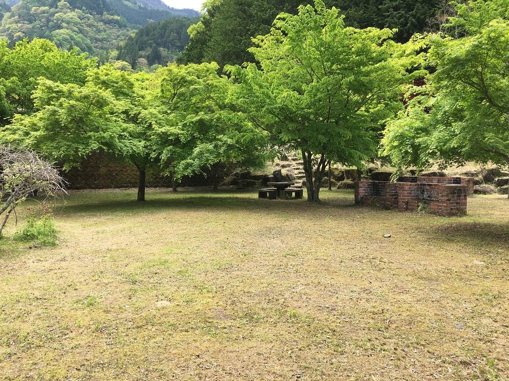 大柳川渓流公園 キャンプ場芝生2