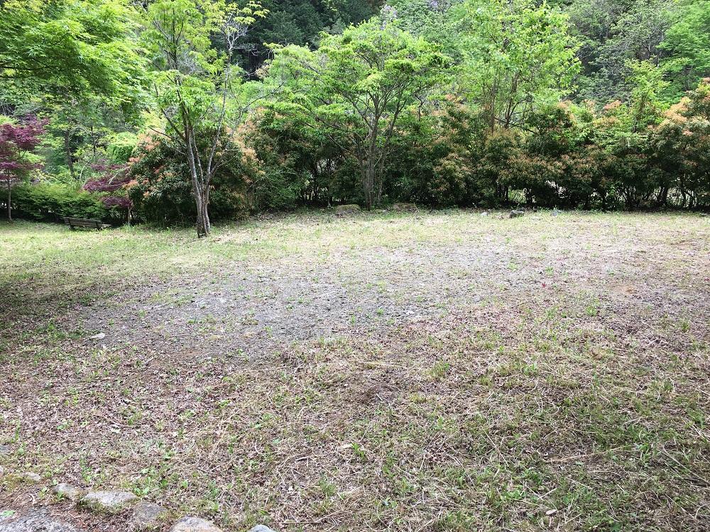 大柳川渓流公園 キャンプ場芝生3